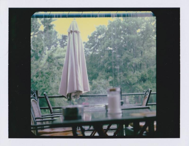 Luisenpark Mannheim Polaroid 2
