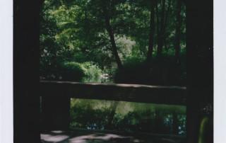 Luisenpark Mannheim Polaroid 3